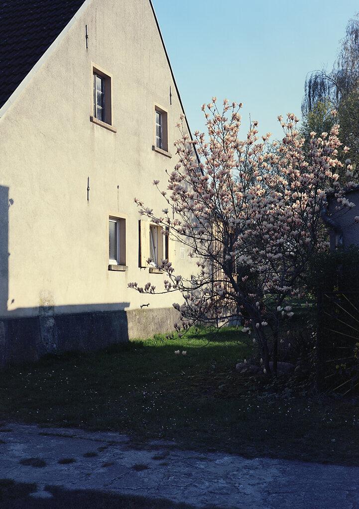 Radensleben21172.jpg